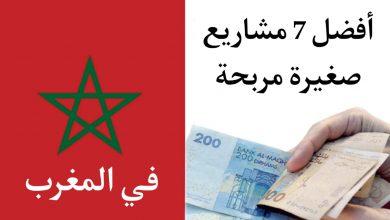 صورة أفضل 7 مشاريع صغيرة مربحة في المغرب