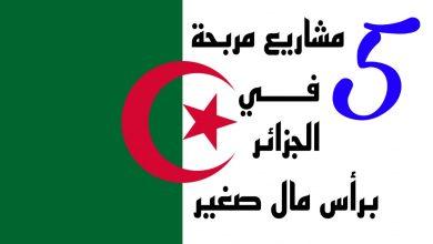 صورة إليك 5 مشاريع مربحة برأس مال صغير في الجزائر